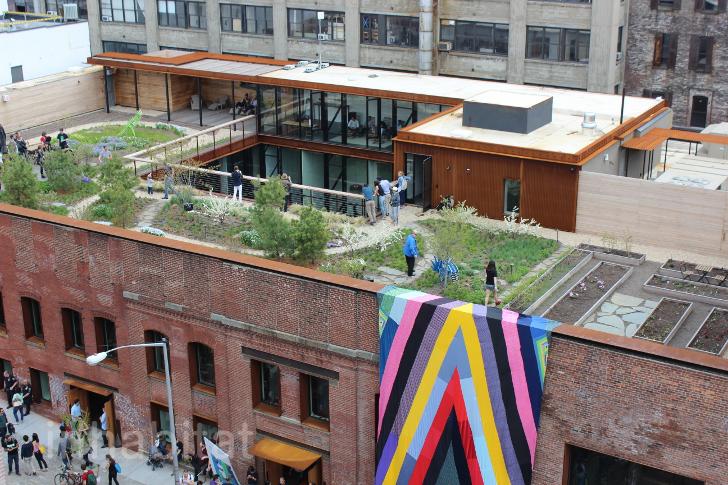 kickstarter-ufficio spettacolare tetto giardino